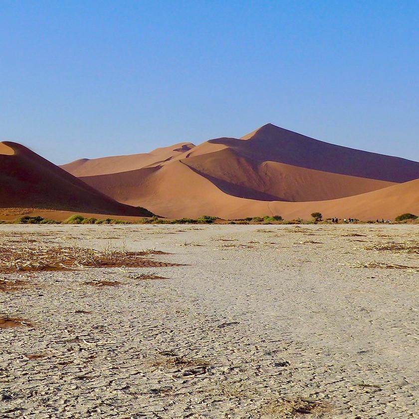 Sossusvlei ground - Namibia