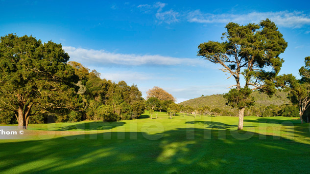 Plettenberg Bay Country Club 12th Hole P