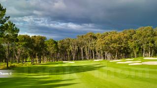 Hermanus Golf 6th Par 5 c.jpg