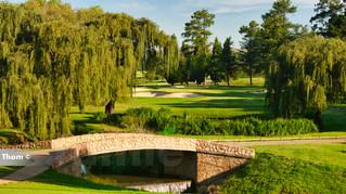 Glendower Golf 14th Par 3 a.jpg