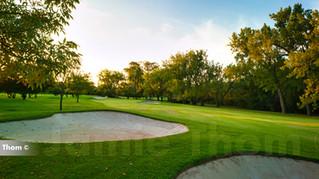 Glendower Golf 11th Par 4 d.jpg