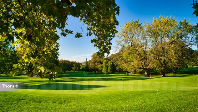 Bryanston Country Club 12th Par 4 b.jpg