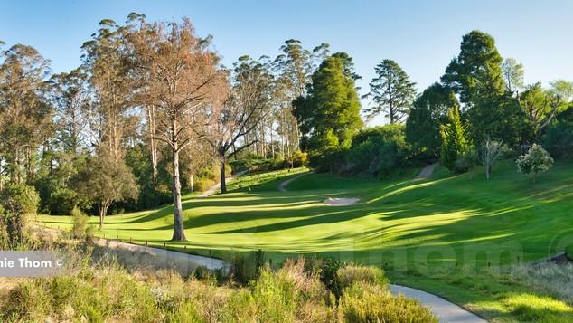 George Golf Club 15th Par 3 b.jpg