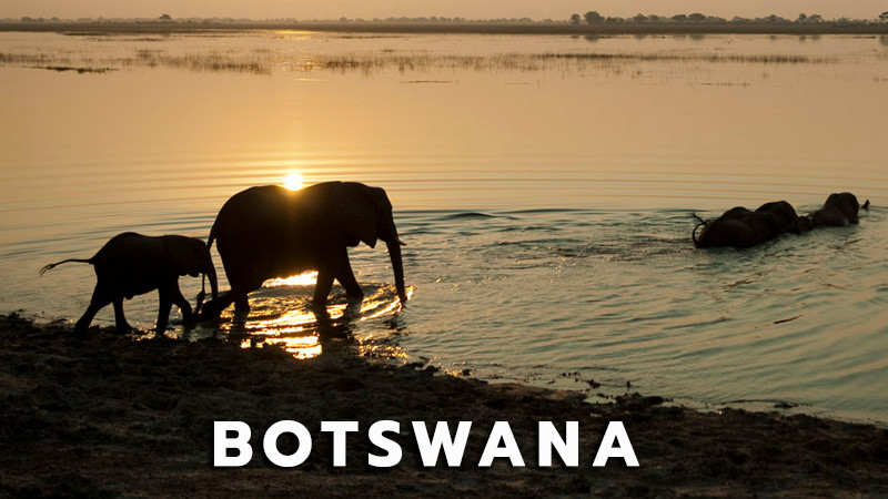 Botswana_Safari.jpg