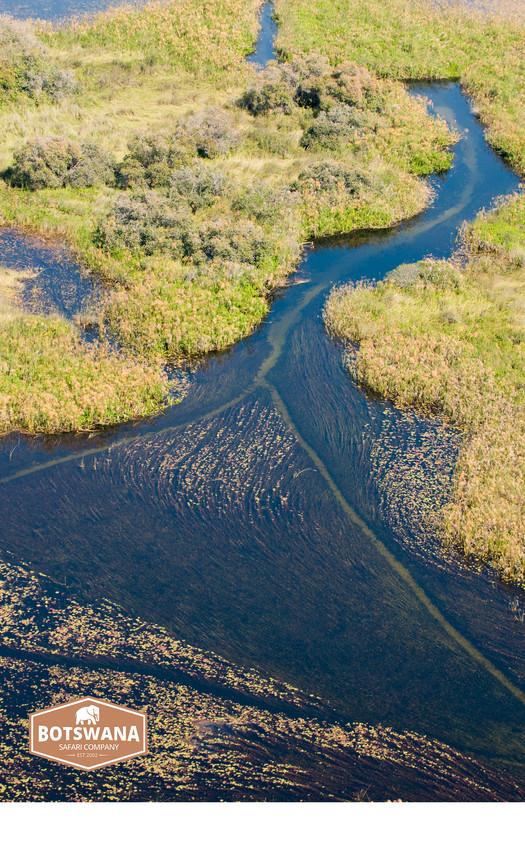 Water Wilderness 2_Botswana_Safari_Company