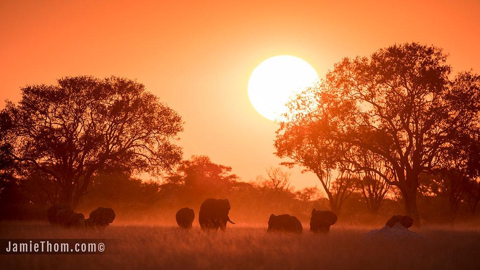 ZIMBABWE TRIPLE - 9nts