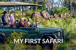 FIRST SAFARI