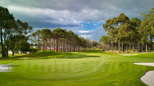 Hermanus Golf 11th Par 5 c.jpg