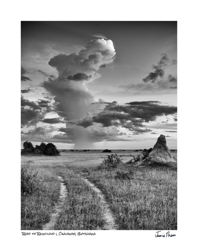 Road to Raincloud 1.jpg