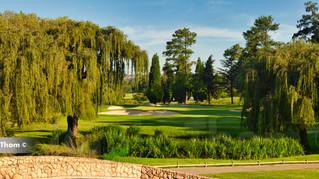 Glendower Golf 14th Par 3 b.jpg