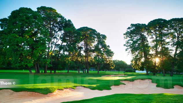 Houghton Golf Club 14th Par 3 d.jpg