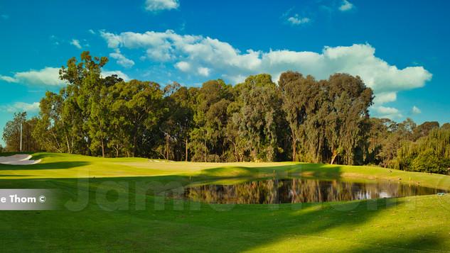 Houghton Golf Club 15th Par 5 a.jpg