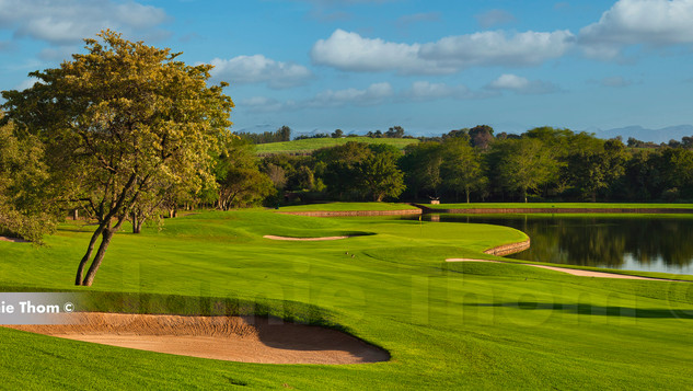 Leopard Creek 15th Par 5 a.jpg