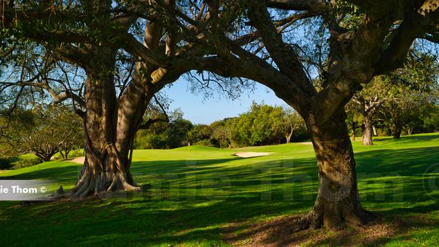 Nelspruit Mombela Golf 16th Par 4.jpg