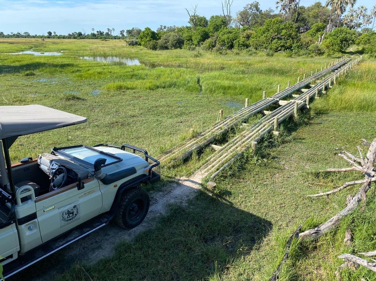 Camp Maru game drive Okavango Delta