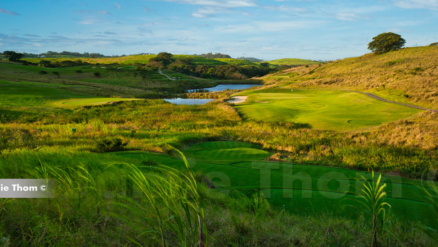 Simbithi Golf Course 11th Par 3 c.jpg