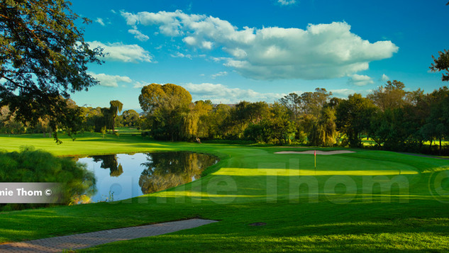 Randpark Bushwillow 17th Par 5 a.jpg