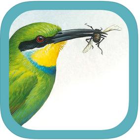 Safari Travel Apps