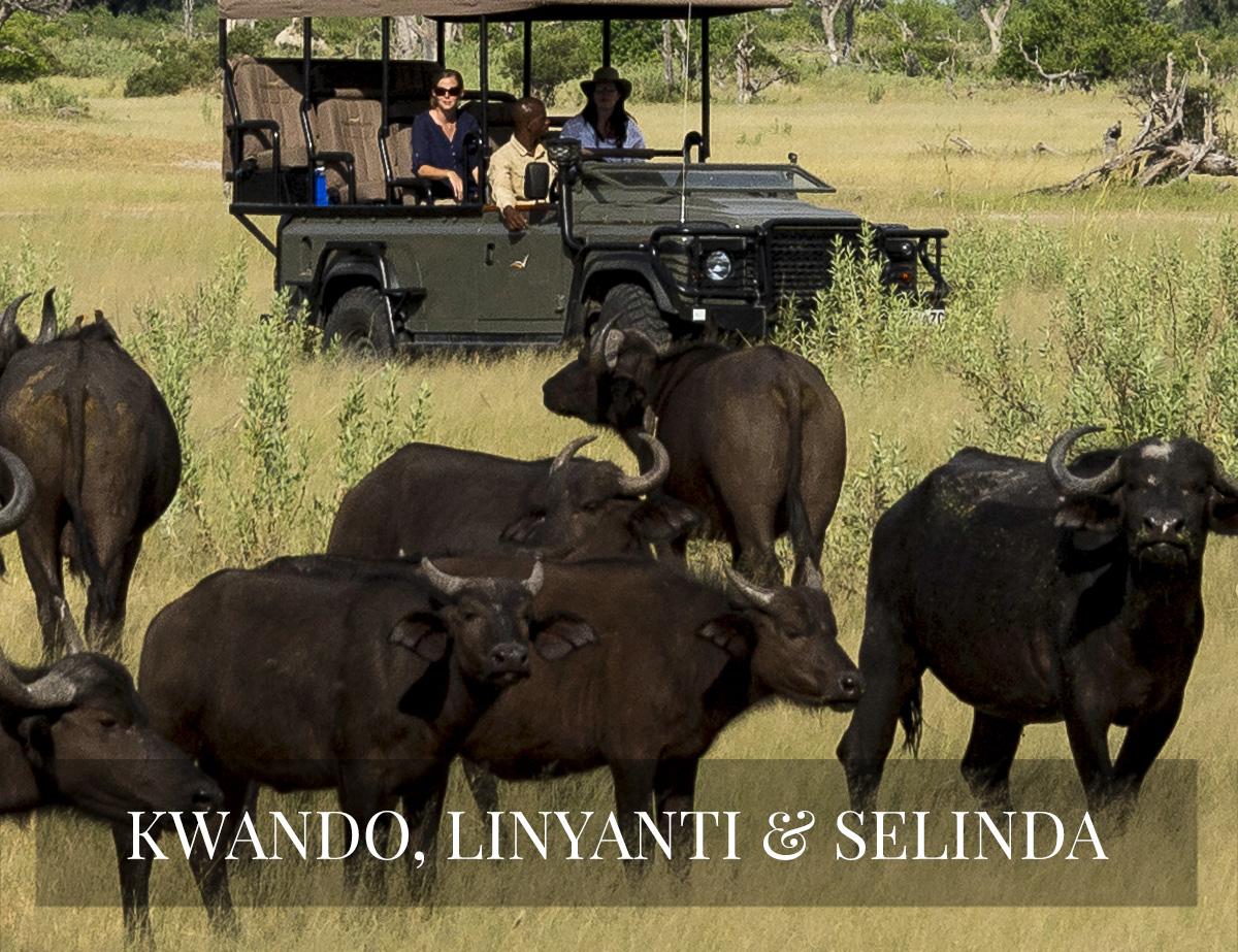KWANDO, LINYANTI BOTSWANA SAFARI