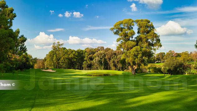 Houghton Golf Club 15th Par 5 b.jpg