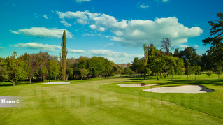 Glendower Golf 8th Par 5 a.jpg