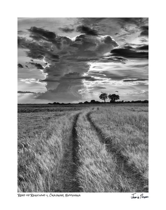 Road to Raincloud 2.jpg