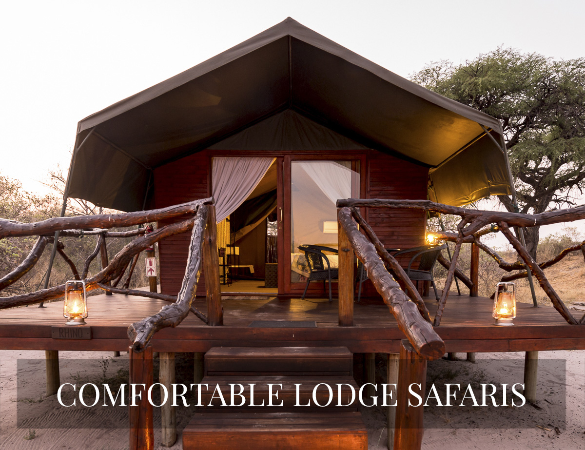 COMFORTABLE LODGE SAFARIS BOTSWANA