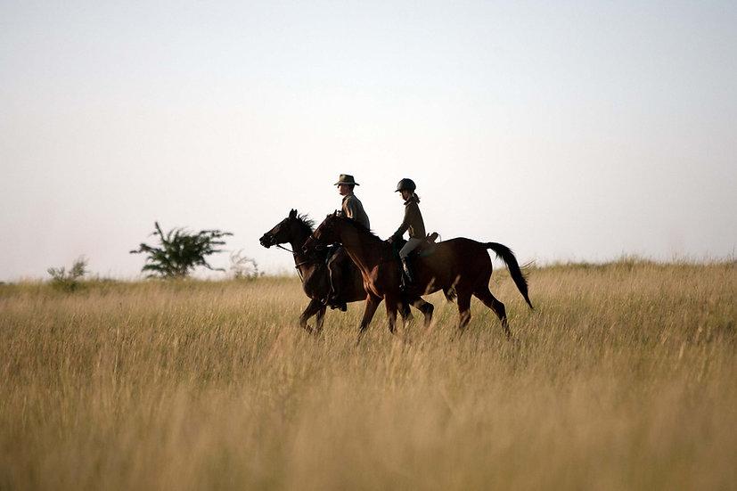 KALAHARI HORSE TRAIL -3 Nights
