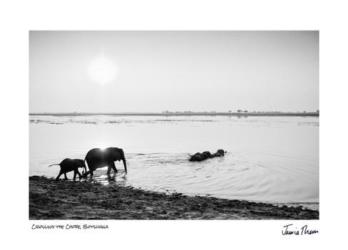 Crossing the Chobe.jpg