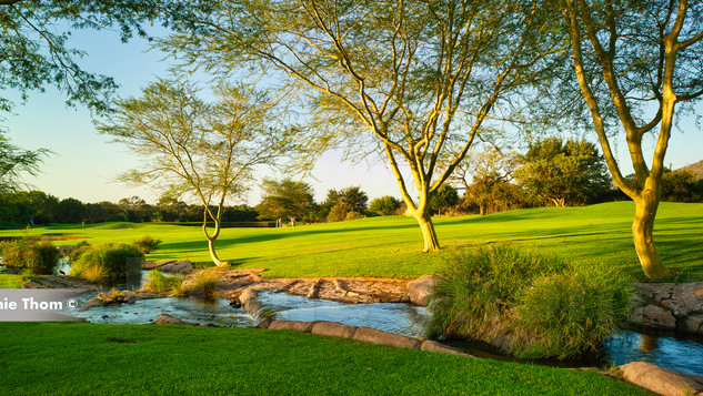 Leopard Creek 9th Par 4 d.jpg