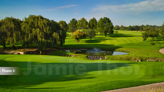 Modderfontein Golf Club 17th Par 4 b.jpg