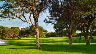 Sishen Golf 8th Par 3 a.jpg