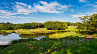 Selborne Golf 8th p4.jpg