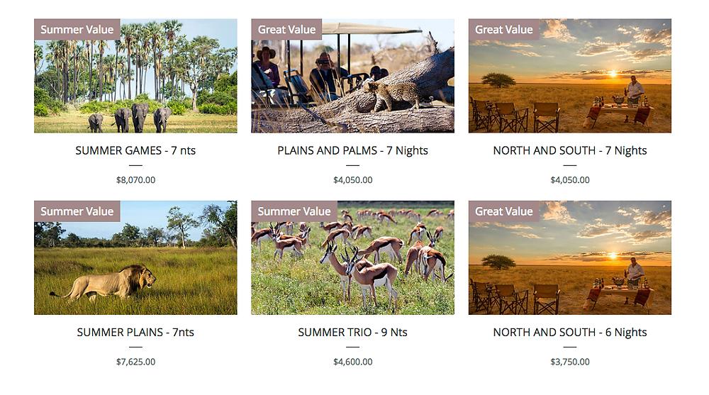 Summer Safaris Botswana