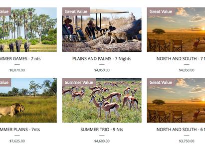 Summer Safaris in Botswana
