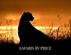 BOTSWANA SAFARIS BY PRICE