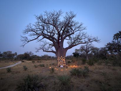 ROMANTIC Botswana - 12 images!