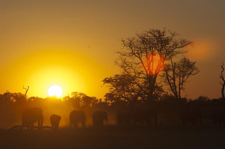 BOTSWANA ADVENTURE - 9 Nights