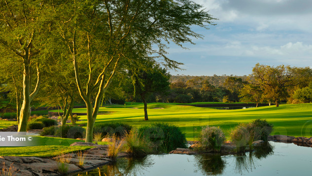 Leopard Creek 9th Par 4 e.jpg