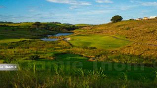 Simbithi Golf Course 11th Par 3 d.jpg