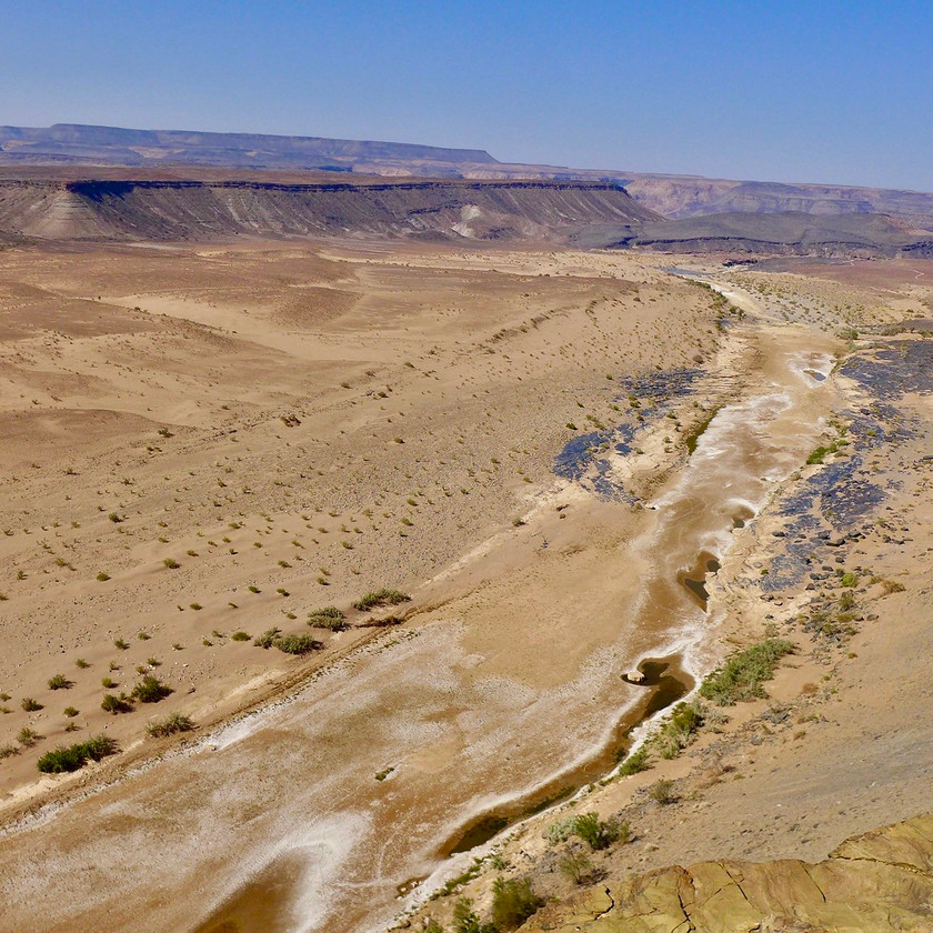 Southern - Namibia safari