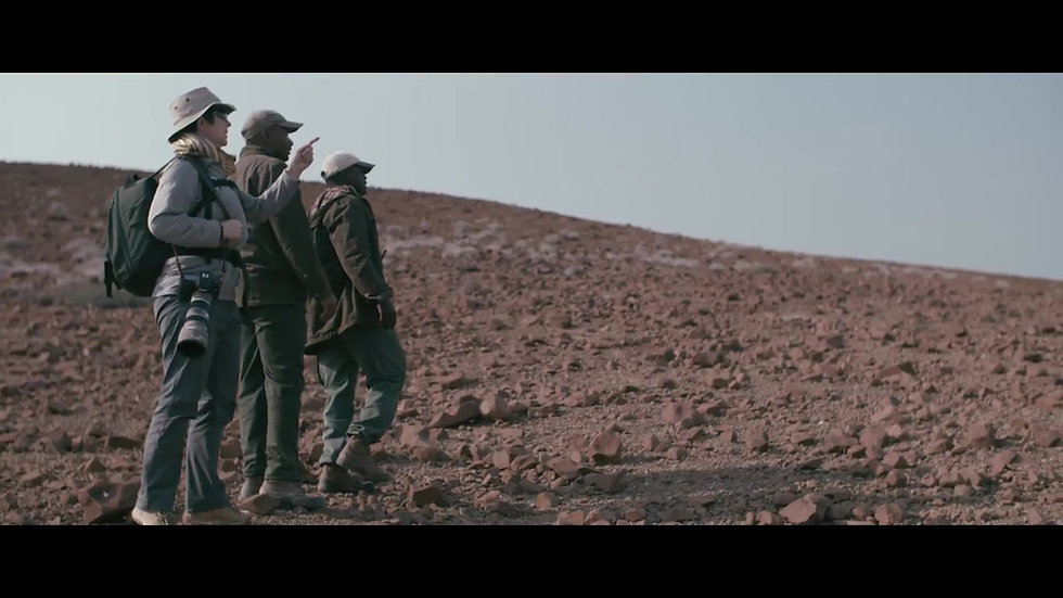 DESERT RHINO LODGE - 3 nts