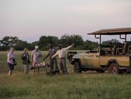 Summer in Botswana - One Great Trip!