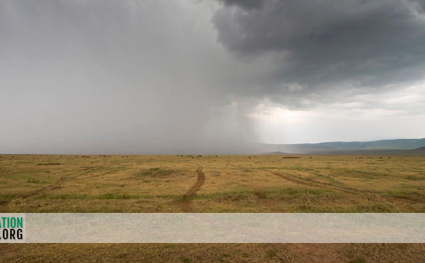 Ngorongoro Crater Jamie Thom 11
