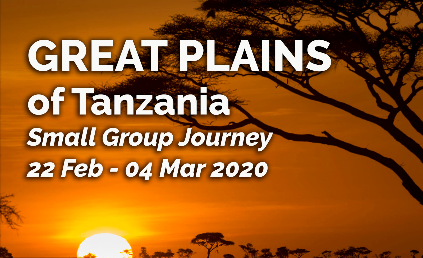 Great Plains Tanzania link.jpg