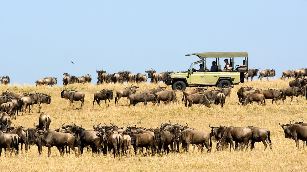 LUXURY TANZANIA TRIPLE - 7nts