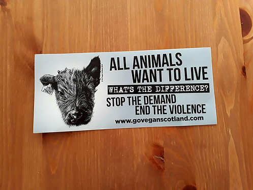 GVS Cow/Dog Car Bumper Sticker