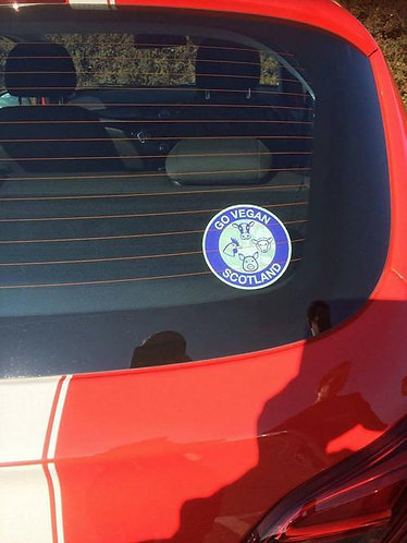 GVS Window Sticker