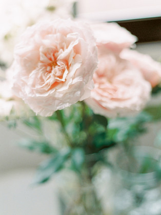 Garden Roses - Blush - Meg Owen Events
