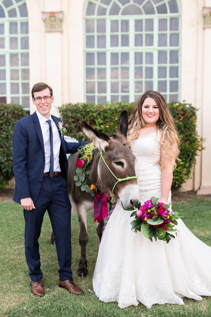 Bride-Groom-Mexican-Themed-Donkey.jpg